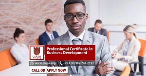 Professional Certificate in Business Development